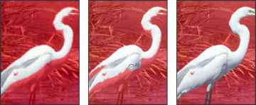 Egret Photoshop Tutorial